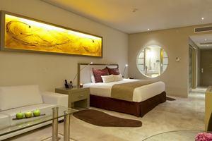 The Reserve Paradisus Junior Suite