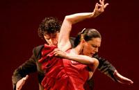 Flamenco & Fado Experience